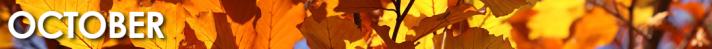 October_1080x75